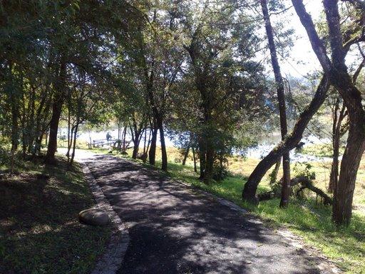 Trilha no Bosque da Uva, Colombo, Paraná.